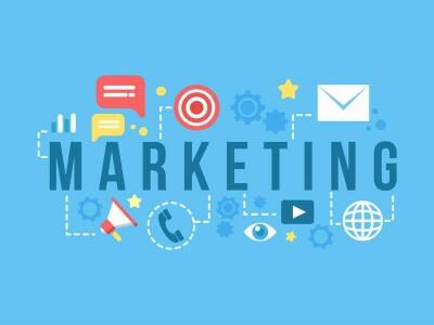Servicii de Marketing Profesionale - busoho.ro